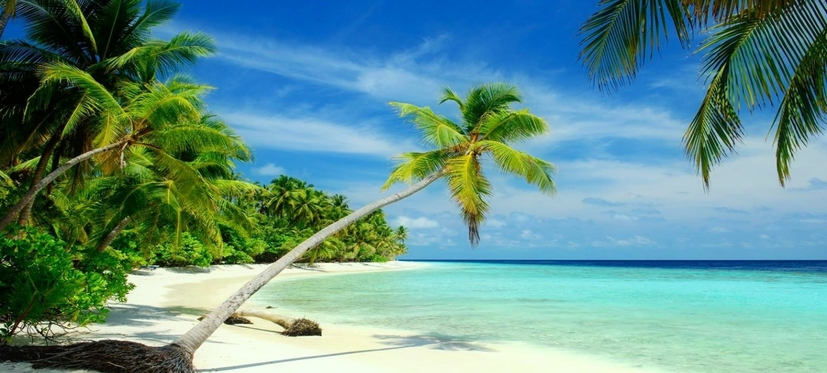 Kerala Beach Tour Package 4 Nights/ 5days, Cochin - Alappuzha - Varkala