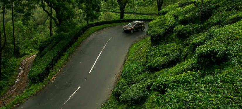 Summer Kerala Holiday Package 07 Night 08days, Cochin-Munnar-Thekkady-Alleppey-Kovalam