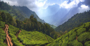 Munnar & Mysore 09 nights /10 days