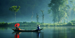 Monsoon Kerala Family tour package