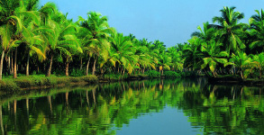 Fascinating kerala package