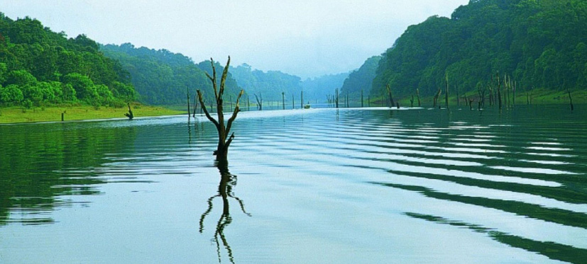 Kerala summer package 3Nights / 4days, Munnar-Thekkady