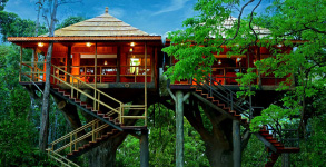 Kerala nature package 3Nights / 4days, cochin - varkala
